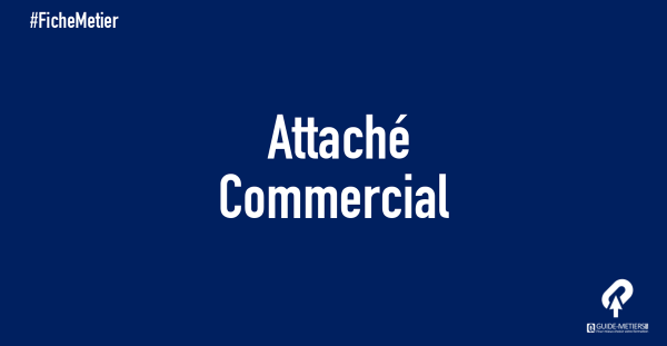 attach u00e9 commercial   m u00e9tier  formation  salaire