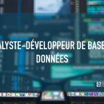 Analyste-développeur de base de données